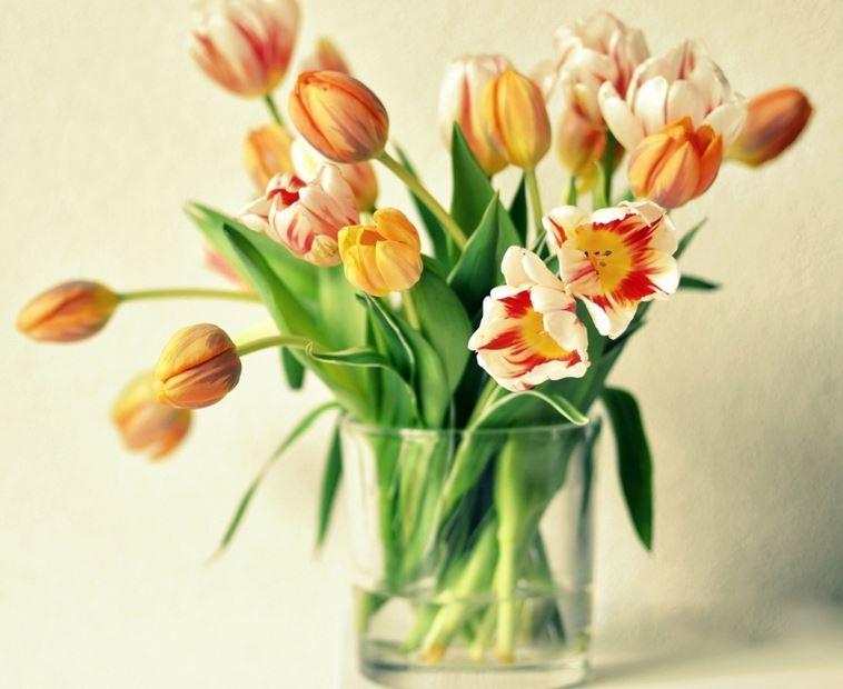 Как надолго сохранить букет цветов свежим?